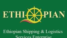2016 | Ethiopian Job Finder | Page 37