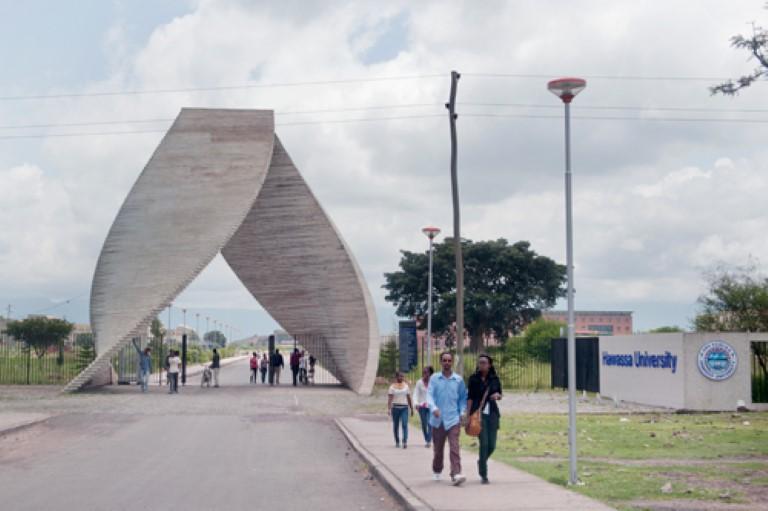 85+ Academician job openings at Hawassa University